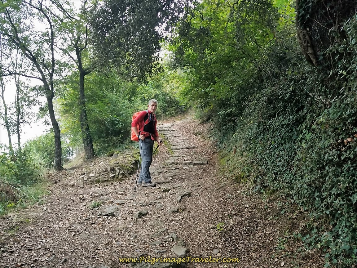 Ancient Path to the Santa Cristina de Lena Hermitage on day five of the Camino de San Salvador