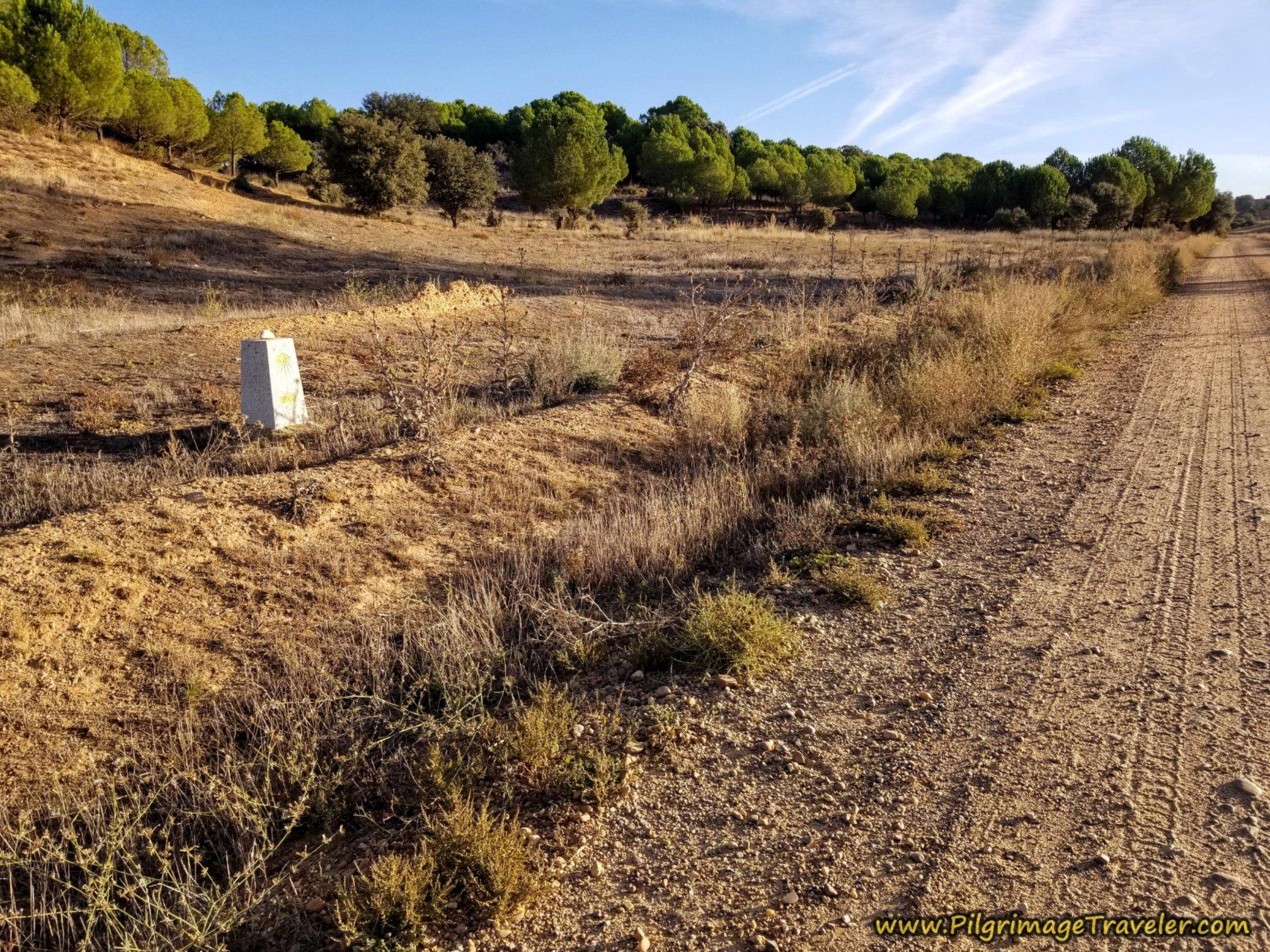 Waymark Back to Main Camino