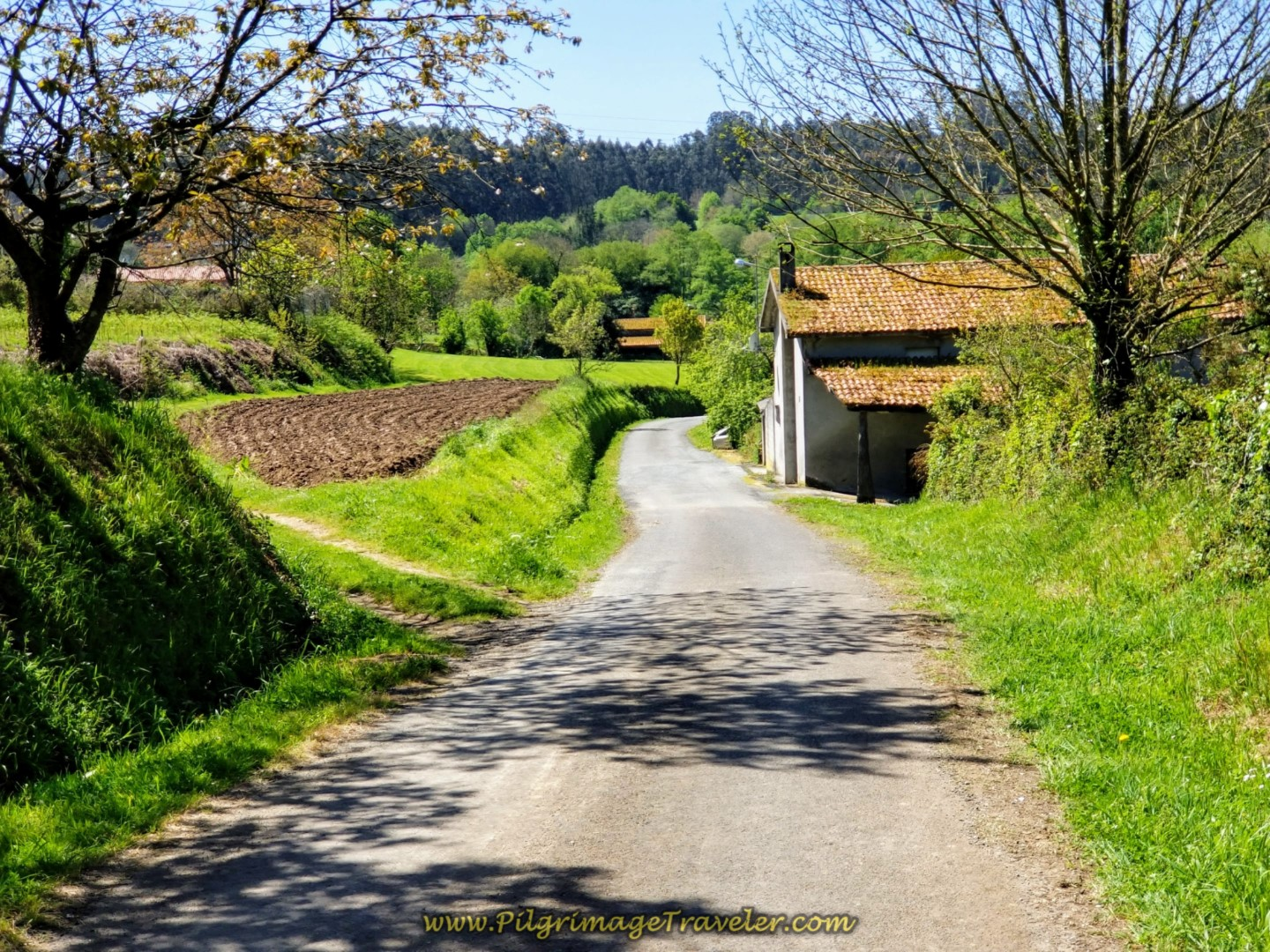 Downhill Reprieve on Quiet Country Lane on day five of the Camino Inglés