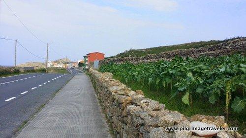 Camino Finisterre coming into Muxía