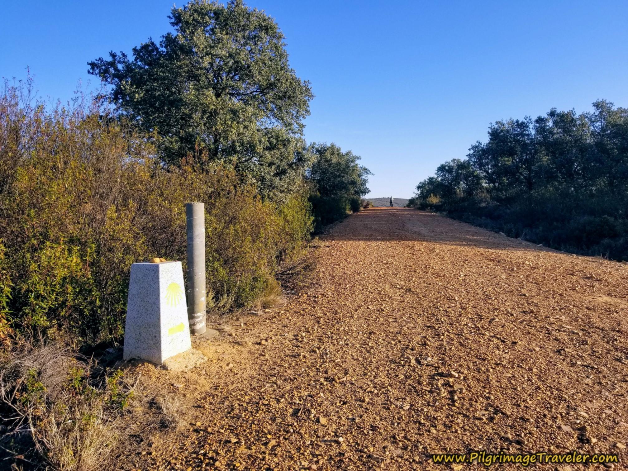 New Waymark at Top on the Camino Sanabrés from Tábara to Santa Marta de Tera