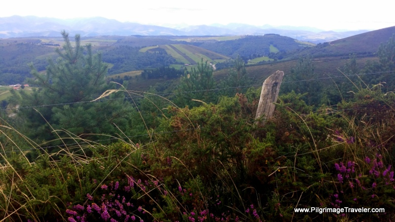 Sweeping Views Open to the Cantabrian Mountains