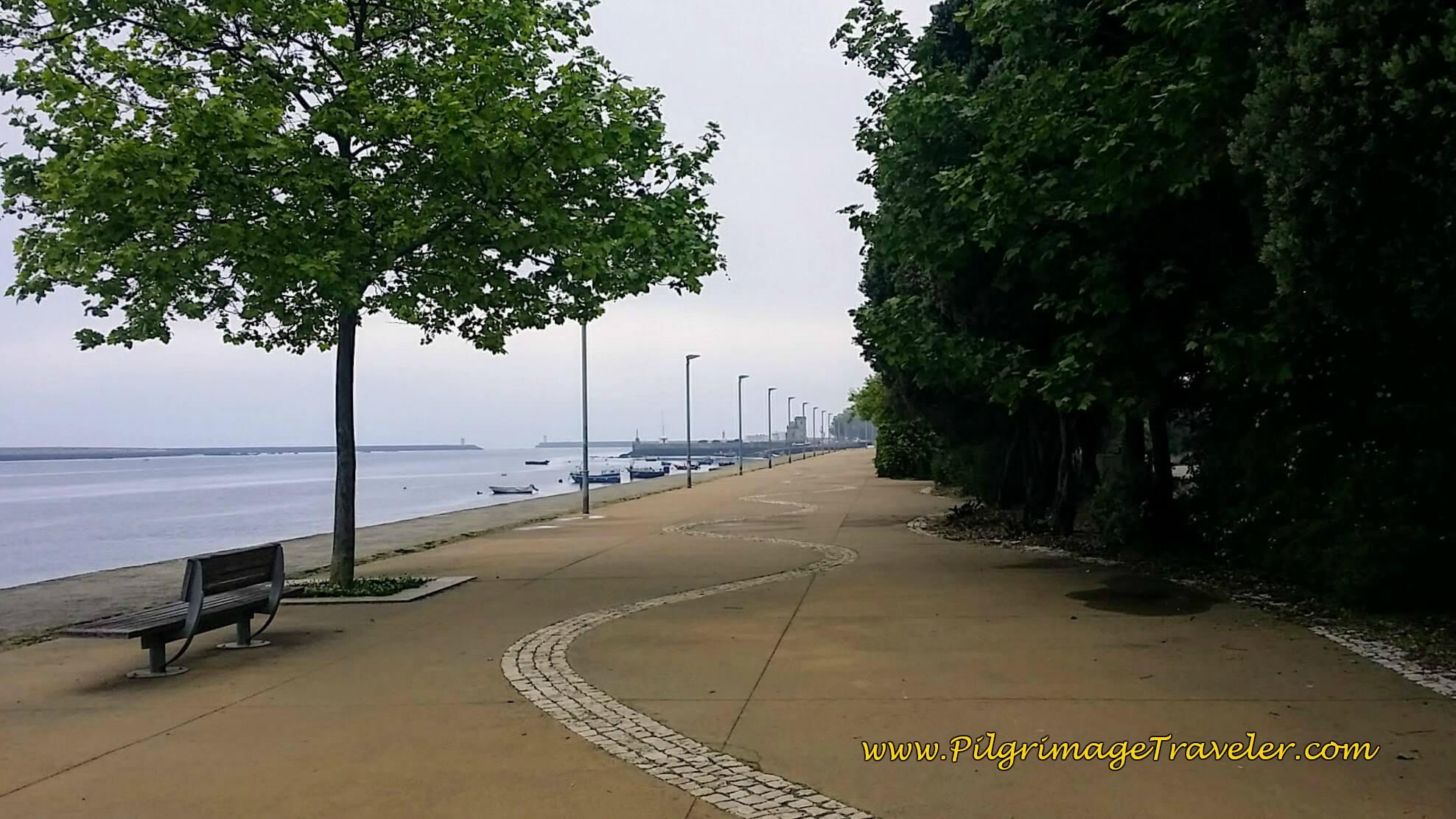 Rua do Passeio Alegre - The Joyful Passageway on day fifteen of the Camino Portugués on the Senda Litoral