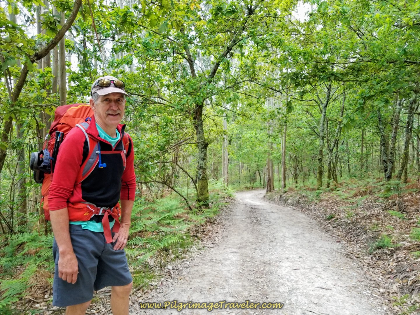 Rich on Forest Path on day one on the Camino Finisterre