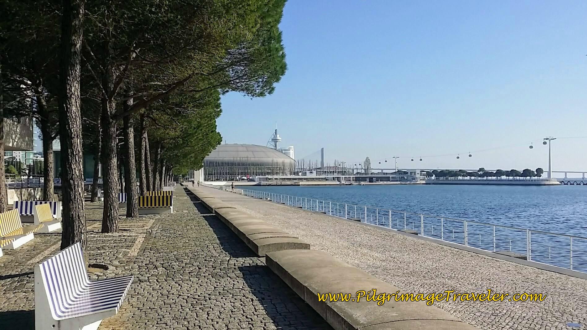MEO Arena on the Alameda dos Oceanos