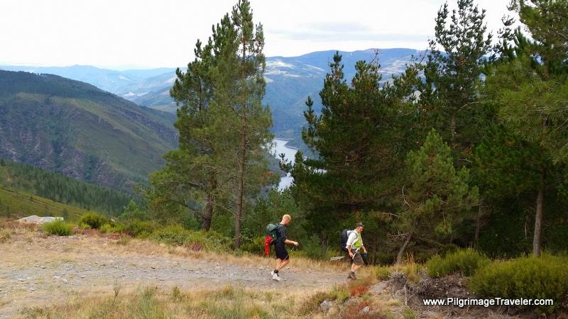 Steeper Now and Down Through the Trees towards Grandas de Salime, Camino Primitivo