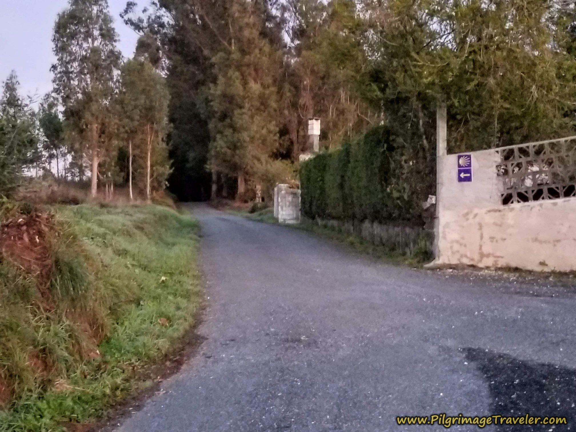 Stay Left Toward a Path in Gándara