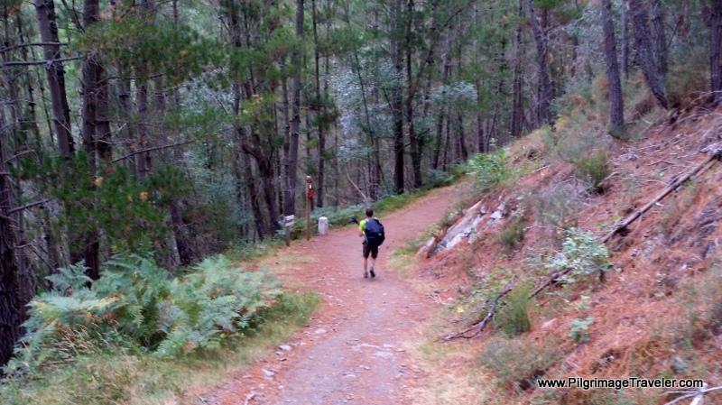 Grandas de Salime 8.3 Km, Berducedo 11 Km