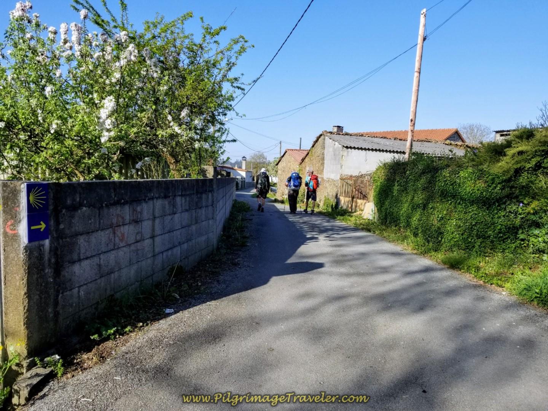 Walking Through Vilariño on day seven of the Camino Inglés