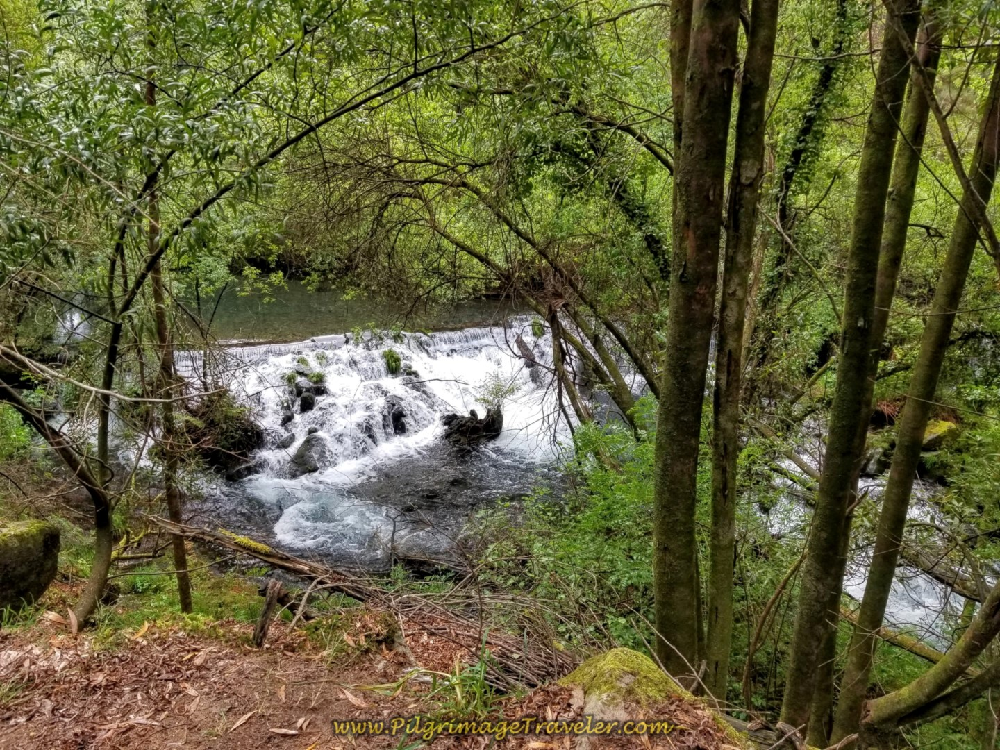 Walking by an Inviting Waterfall on day eighteen on the Central Route of the Portuguese Camino