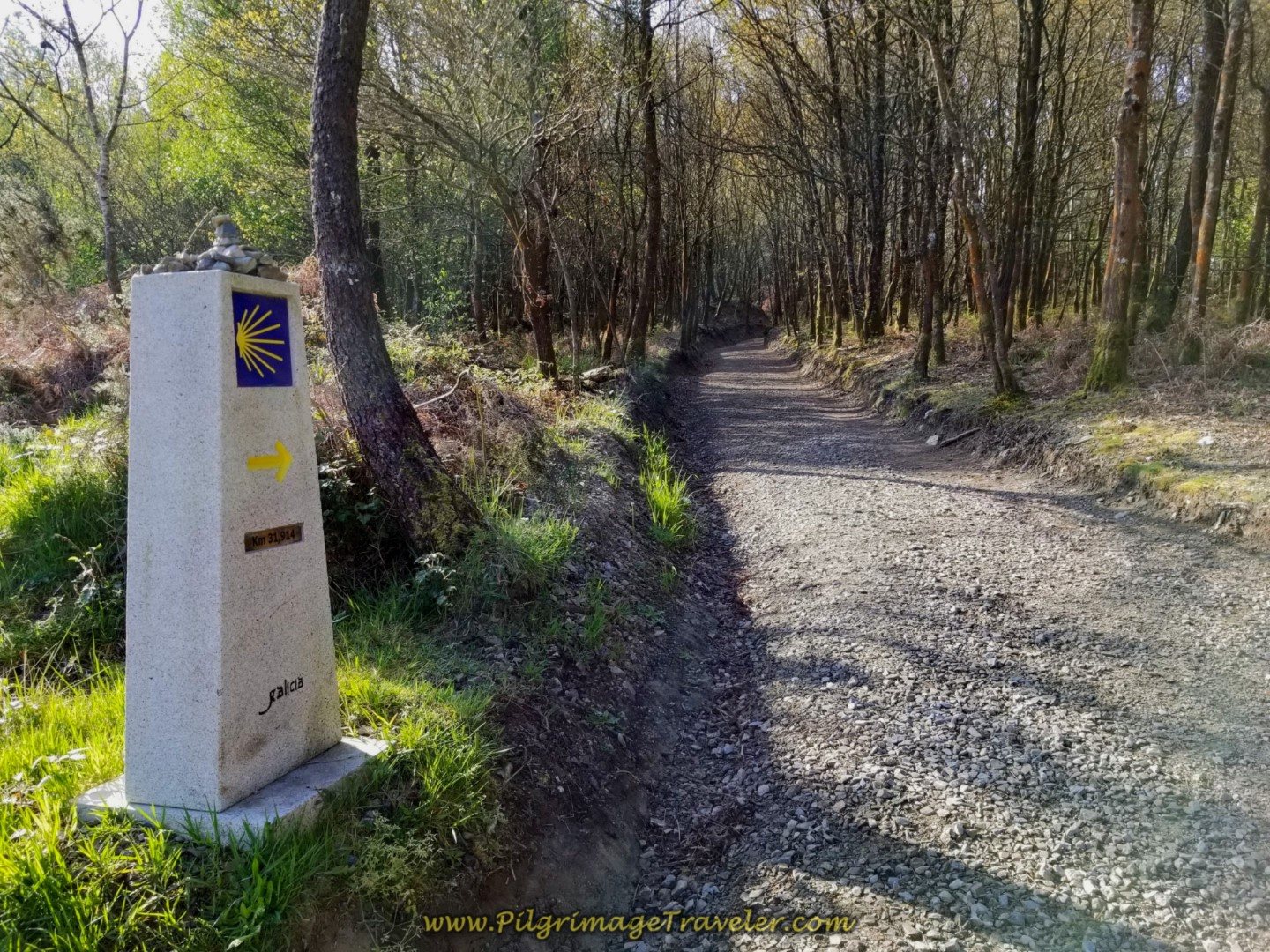 Pass 31.9 Kilometer Marker on day seven of the Camino Inglés