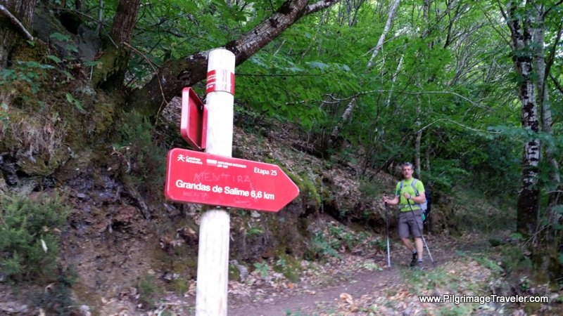At the Junction with AS-14 ~ Grandas de Salime, 6.6 Km
