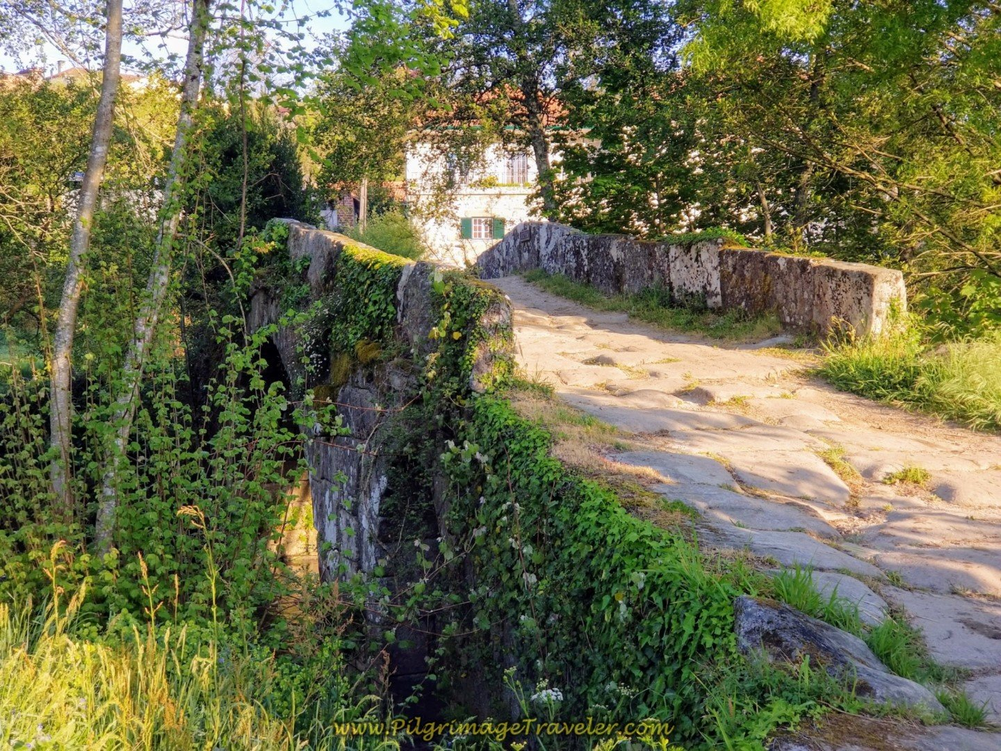 Roman Bridge Over the Rio Coura, near Rubiãs on day nineteen on the Central Route of the Portuguese Camino