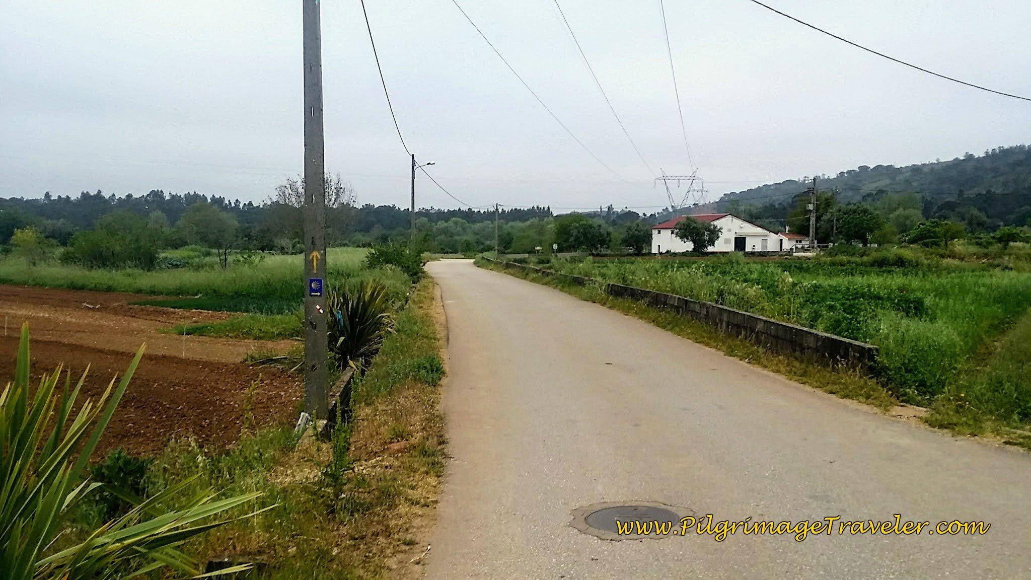 Follow the Rua Pregeira