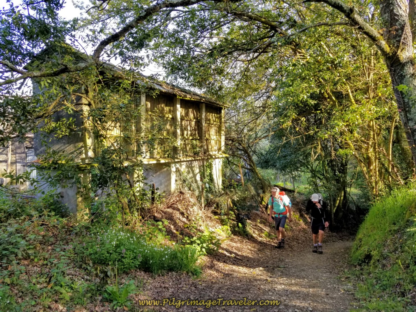 Rich and Rob Walking by Horreo in O Outeiro on day seven of the Camino Inglés