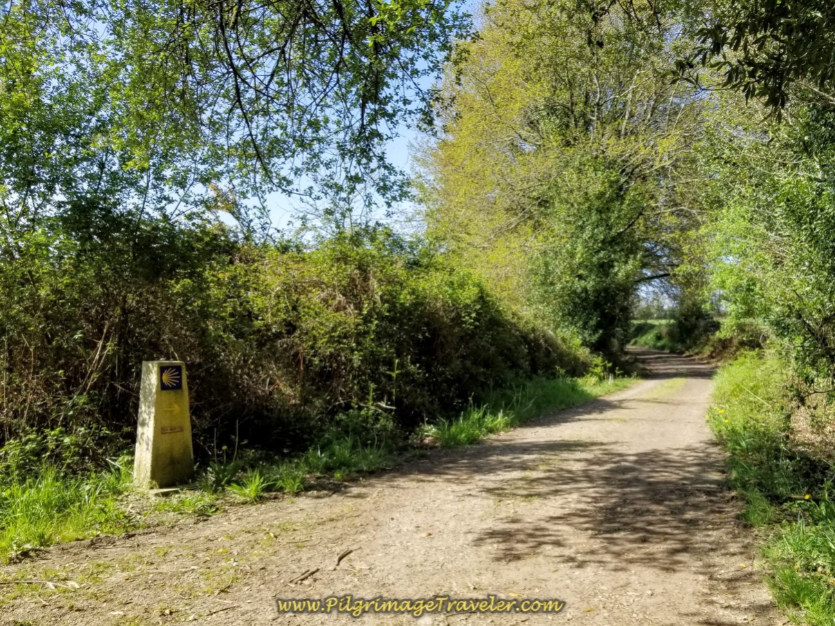 Softer, Shaded Dirt Lanes Begin on day seven of the English Way