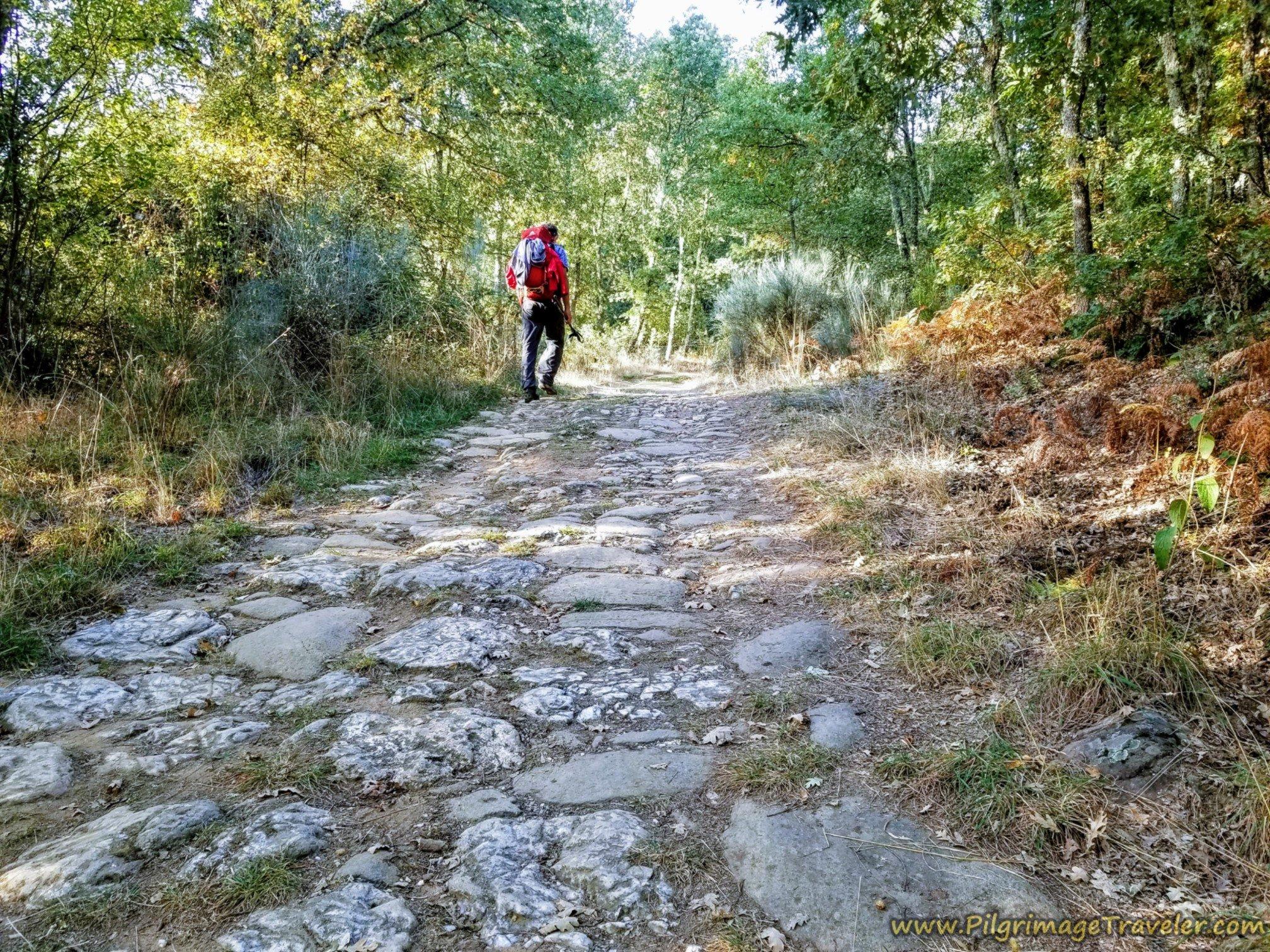 Paved Roman Road on the Way to Puebla de Sanabria
