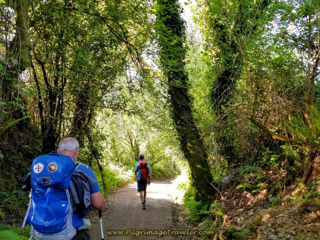 Steve and Rich Continue on Lane for 1/2 Kilometer More on day seven of the English Way
