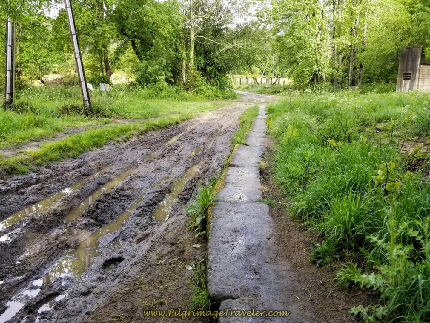 Stone Path Beside Muddy Ruts in the Road on day twenty on the central route of the Portuguese Camino
