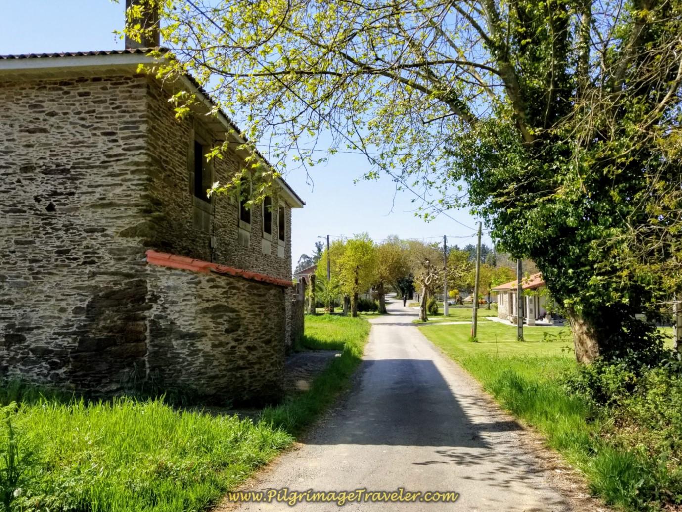 Walk Into Hamlet of Baixoa on day seven of the English Way
