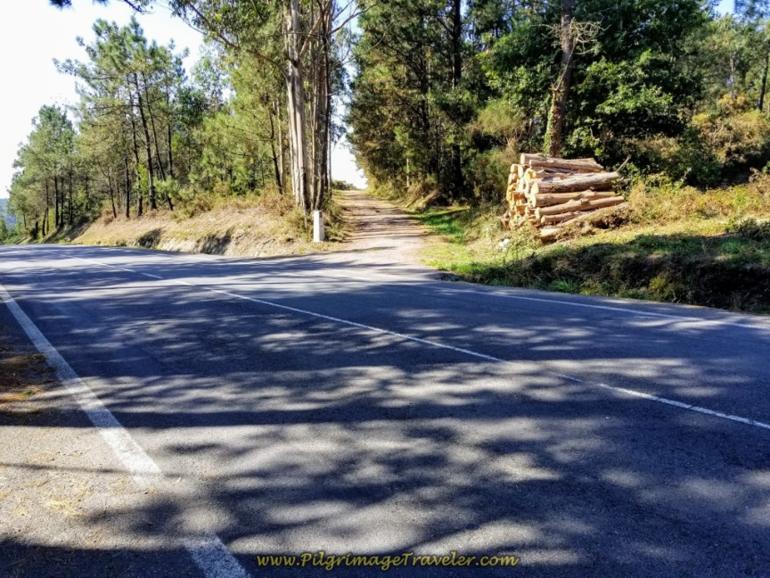 Cross Over the DP-3404 and Continue on Gravel Road