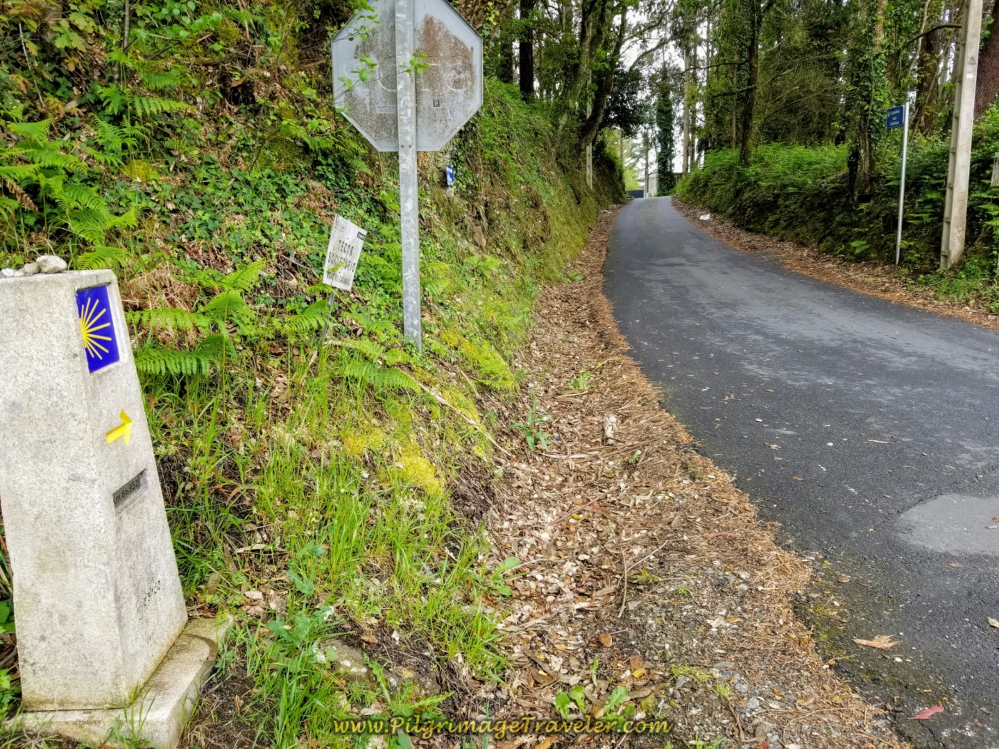80.952 Kilometer Marker on the Camiño do Cadivas on day two of the English Way