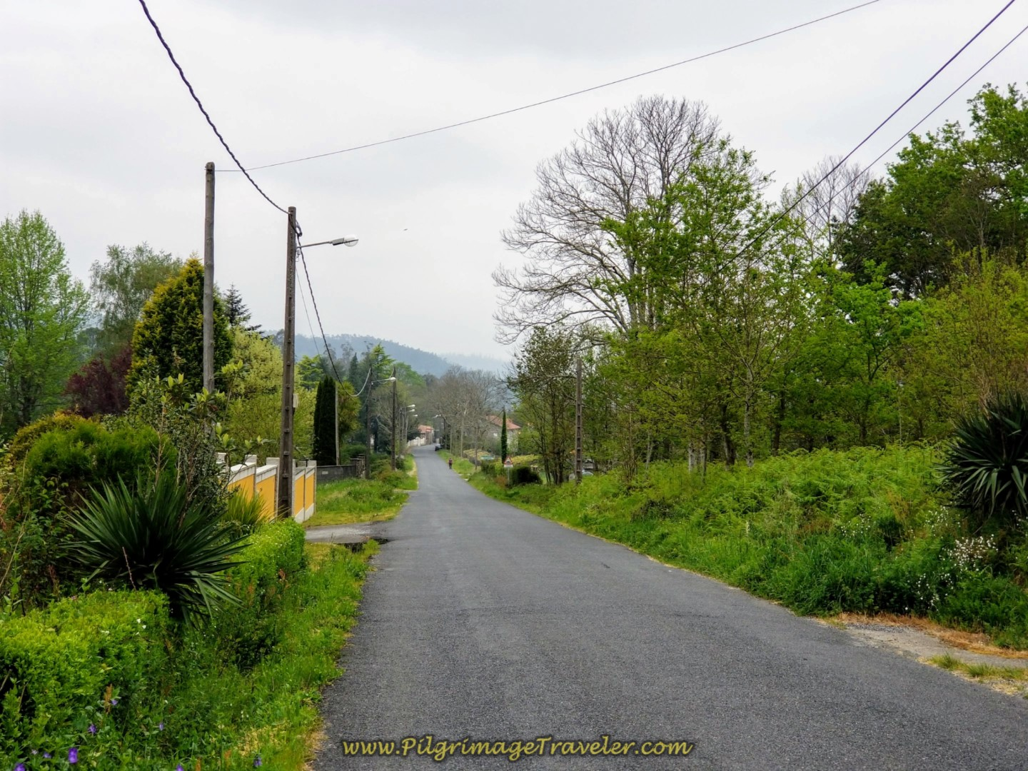 Towards the Río Tambre and The Ponte Maceira on day one of the Camino Finisterre