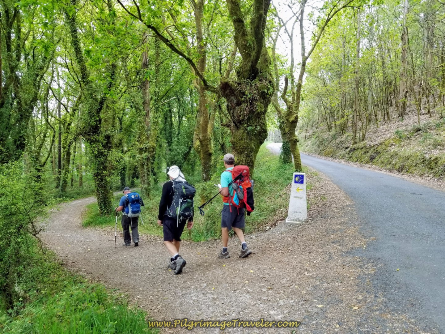 Left Turn Onto Path at 72 Kilometer Marker on day one of the Camino Fisterra