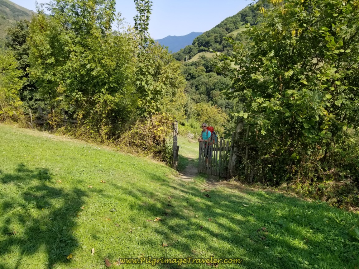 Find Gate Across the Meadow After the Church
