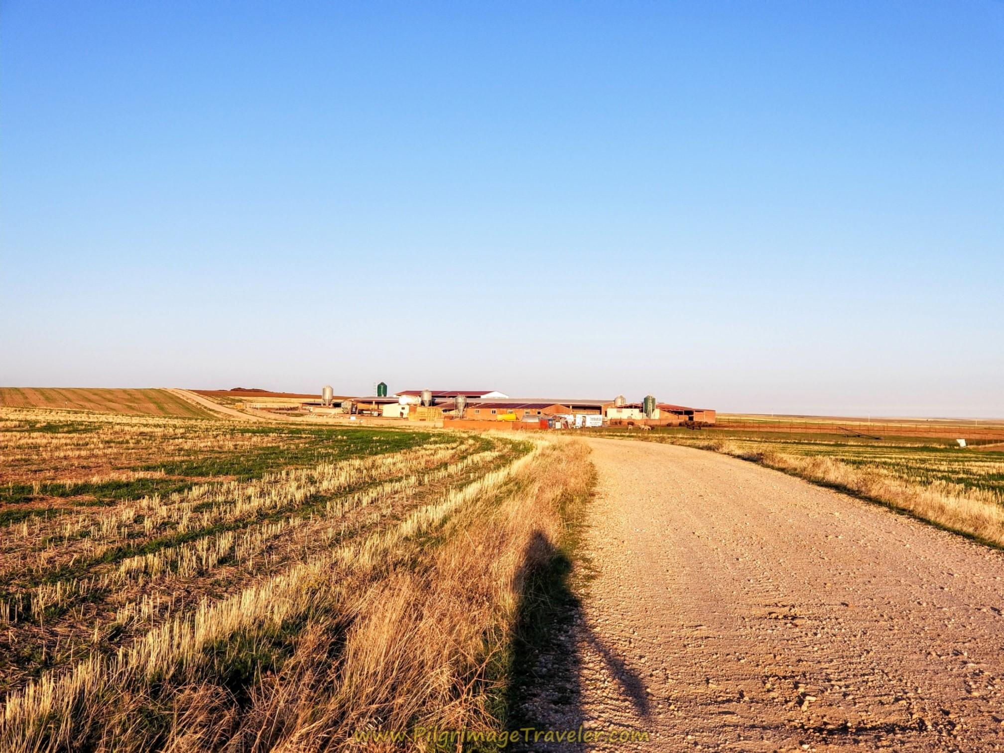Large Farm Ahead