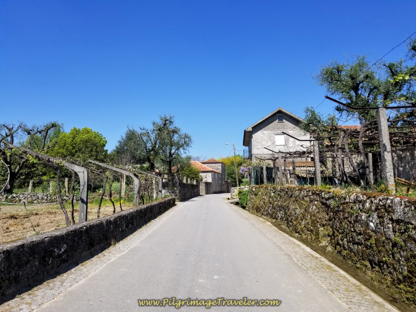 Continuing on the Rua do Caminho do Santiago on day seventeen on the Central Route of the Portuguese Camino