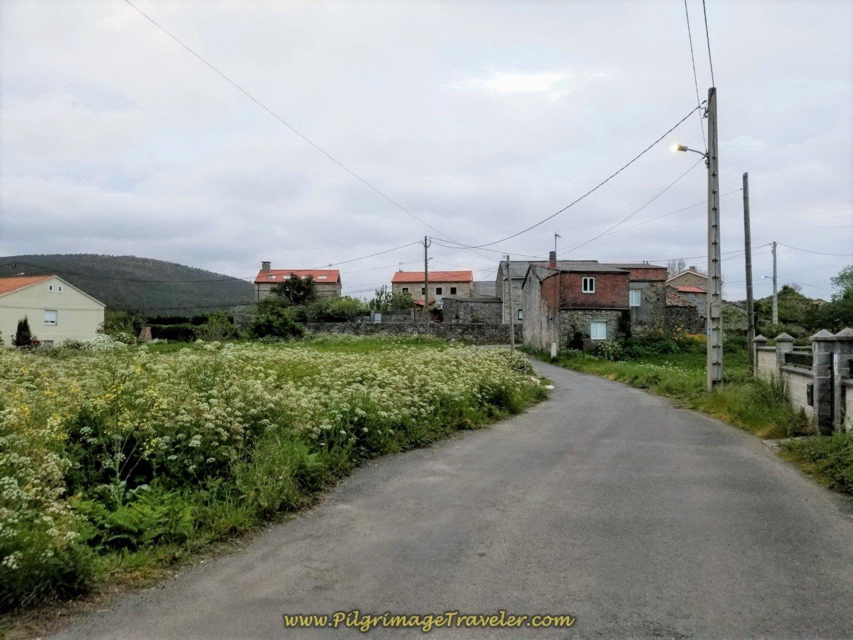 Walk Towards Escaselas