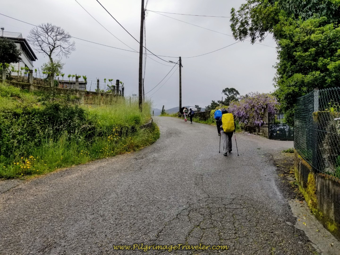 Small hill climb on day twenty-one of the central route of the Portuguese Camino