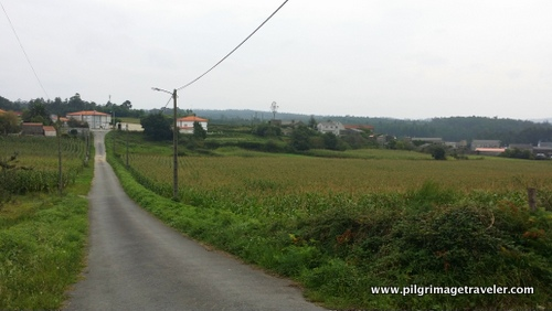 Paved road through the countryside, Camino Finisterre to Muxía