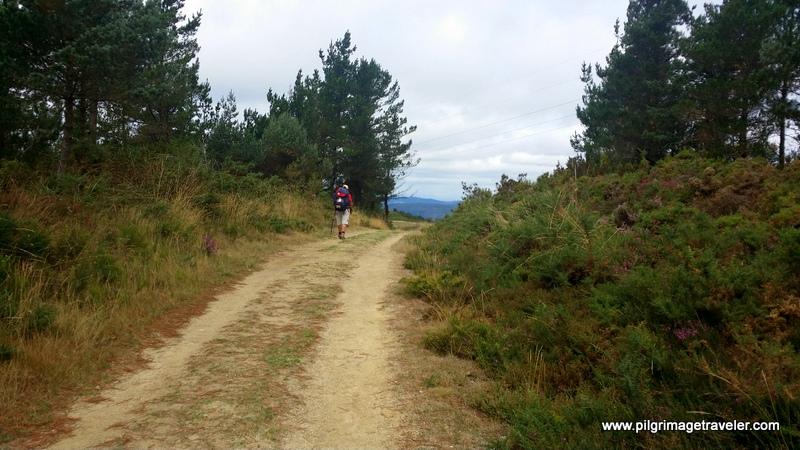 Long Pilgrim Road on the Camino Primitivo, Spain